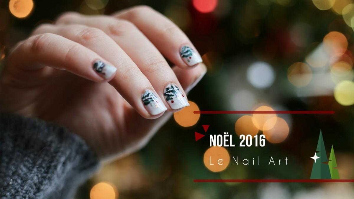 Noël 2016 » Sapin Sauvage